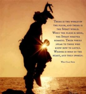 4a07289a4ed5323cd730497cfd17e330--native-american-spirituality-native-american-quotes