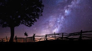 starry_sky_silhouette_swing_tree_night_118434_3840x2160