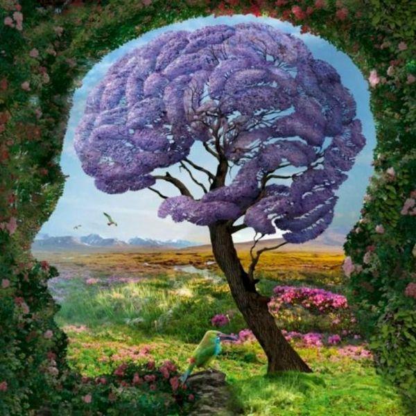 mind-garden-Igor-Morski